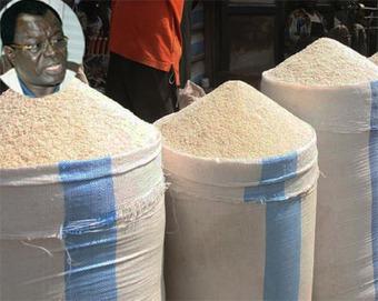 Renforcer la filière riz locale au Sénégal, en vue de réduire les importations   Actions Panafricaines   Scoop.it