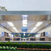 Apple's Glass Stores: A Danger to Birds and Old Ladies? | A 360° Perspective of Communications, Strategy, Technology and Advertising | Scoop.it