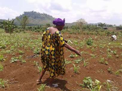 'Land reform in reverse' - land grabs are increasing world hunger | Food Security, resilient, sustainable, equitable | Scoop.it