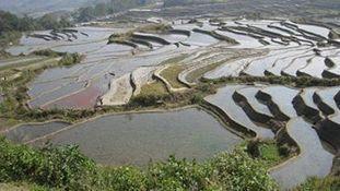 Journée mondiale des zones humides 2014 | Facebook | ZONES_HUMIDES ET AGRICULTURE | Scoop.it