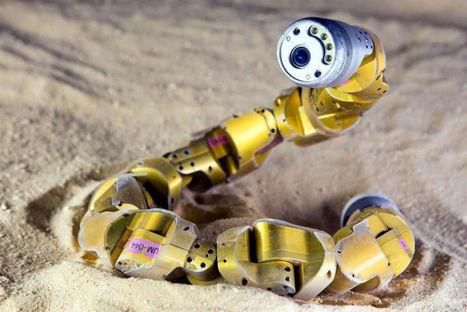 La bio-inspiration : des robots si bêtes - H+ Magazine | Ressources pour la Technologie au College | Scoop.it