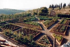 Organic Gardening: Organic Vegetable Gardening Information | Organic Gardening Blog | Scoop.it