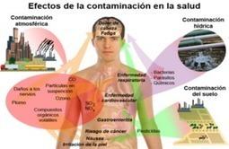 El Uso de los Químicos en la Agricultura - Monografias.com   EEEnergía   Scoop.it