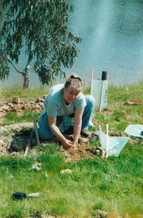 TreeProject | Australian Plants on the Web | Scoop.it