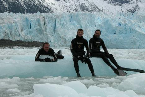Plongée extrême en Antarctique - Figaro Nautisme | Apnea & Spearfishing | Scoop.it