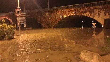 Le Rhône déborde à Avignon, pas de dégâts pour le moment | Grands Risques d'Entreprise | Scoop.it