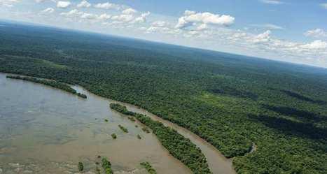 Forêt Amazonienne: la déforestation a augmenté de 29% en 2016 | Biodiversité & Relations Homme - Nature - Environnement : Un Scoop.it du Muséum de Toulouse | Scoop.it
