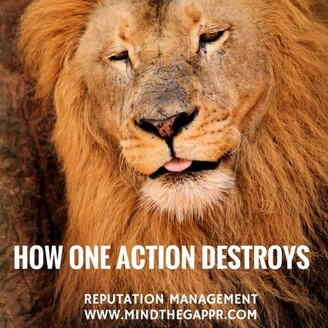 How One Action Can Destroy More than Personal Reputation Cecil the Lion | Crisis Communications | Scoop.it