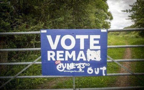 Brexit will make us richer. That's why Leave could still win | Macroeconomics: UK economy Pre-U Economics | Scoop.it