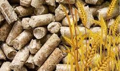 Solution of Problems Occur in Agri-pellets Combustion | Solution | Scoop.it