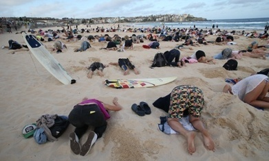 G20: Australians bury heads in sand to mock government climate stance   Yr 9, 10, 11 English Classes   Scoop.it