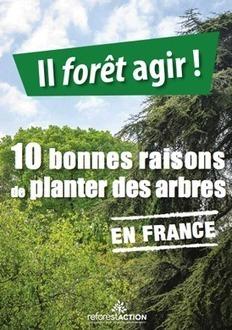 Reboisement : partenariat Fransylva - Reforest'Action | anoribois | Scoop.it