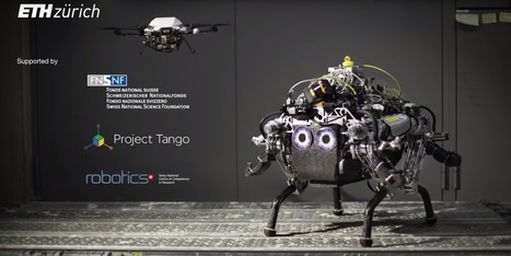 Robot dog can navigate unknown terrain with the help of a flying drone | 21st Century Innovative Technologies and Developments as also discoveries, curiosity ( insolite)... | Scoop.it