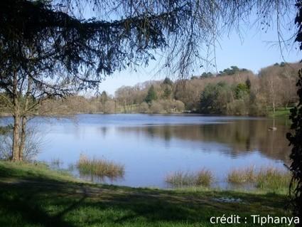 Au pays des korrigans et de Merlin -   Les lieux de légendes, d'hier et d'aujourd'hui   Scoop.it