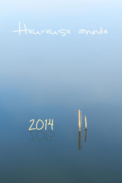 Heureuse année 2014 | Habiter-Toulouse.fr | Scoop.it