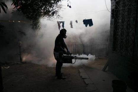 U.S. adds more countries to Zika travel alert | Health IT | Scoop.it