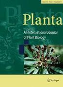 The application of Arabidopsis thaliana in studying tripartite interactions among plants, beneficial fungal endophytes and biotrophic plant-parasitic nematodes | Nematology | Scoop.it