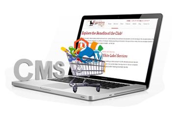 Custom / CMS Development - Executive Web Club | News | Scoop.it