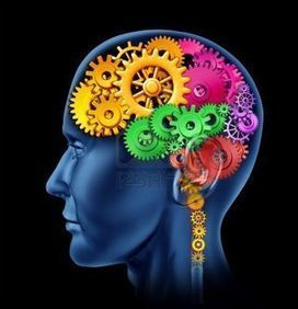 Mindset: Barrier and Driver of Learning in Organizations | Learning Organizations | Scoop.it