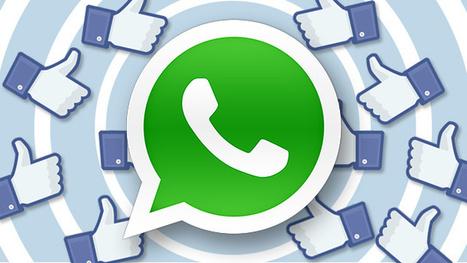 WhatsApp va transmettre les données de ses utilisateurs à Facebook | Actualité Social Media : blogs & réseaux sociaux | Scoop.it