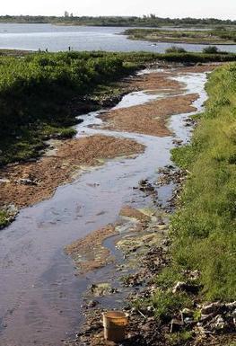 UE: 50 mln di euro contro l'acqua inquinata - Rai News | l'ambiente | Scoop.it