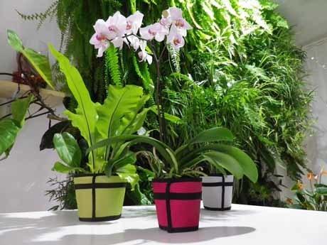 Marre des pots en terre cuite..? Découvrez les « Tricots de Pots » de Vegetal Fabric | Le Gardenbazar | Scoop.it