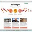 Frustrated researchers unveil Microryza, a crowdfunding site for geeky science projects   onderwijs innovatie   Scoop.it