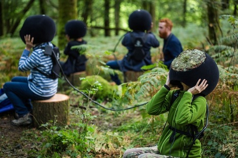 In the Eyes of the Animal – MLF virtualise a forest through the eyes of its creatures | Laboratoire arts & technologies | Scoop.it