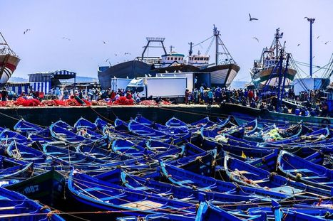 How the world subsidizes overfishing, in two charts | Marine Conservation Research | Scoop.it