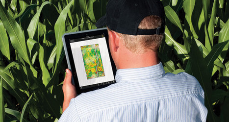 Five Ways to Become a Better Farm Manager | Precision Agriculture | Imagem Agronegócio | Scoop.it
