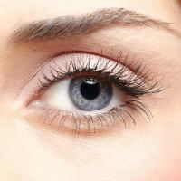 #Plant #Compounds Support #Eye #Health | Supplements Today | Scoop.it