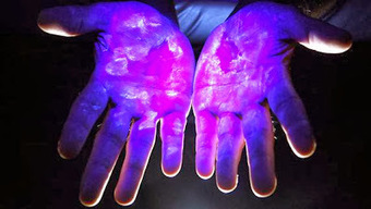 Bacteria on Hand for Forensic Identification | Health Articles | Scoop.it