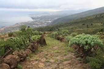 Medio Ambiente te invita a hacer senderismo - La Voz de Tenerife | Montaña | Scoop.it