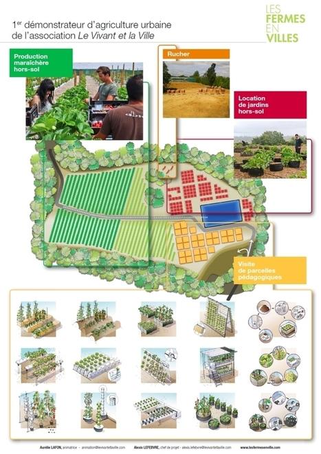 Saint-Cyr-l'Ecole se lance dans l'agriculture urbaine | Agriculture durable et protection des cultures | Scoop.it