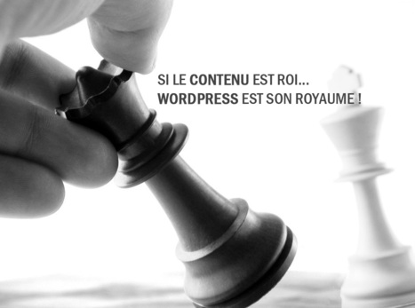 Sans contenu votre blog WordPress n'est rien ! | WordPress France | Scoop.it