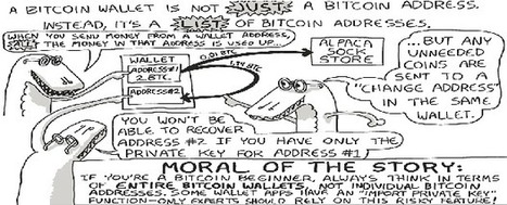 Bitcoin for the buffedled | Security, Compliance, Privacy, & Payments | Scoop.it