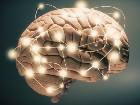 Why you should start a brain technology company | IEEE Spectrum | Cultibotics | Scoop.it