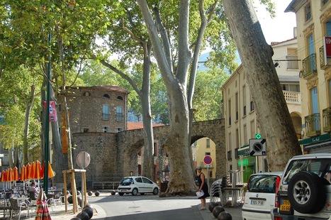 Living France in Languedoc Roussillon: Argelès-sur-Mer & Céret in the Pyrénées-Orientales | European Travel and Tourism | Scoop.it