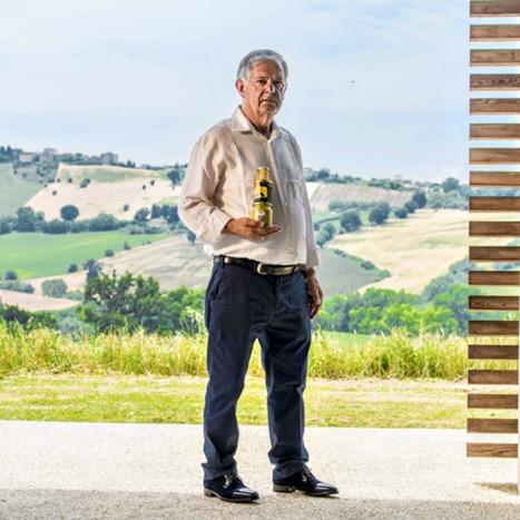 Premiata Apicoltura Sileoni, Tolentino | Le Marche un'altra Italia | Scoop.it