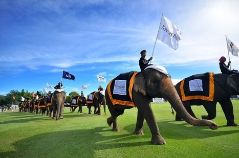 Thailand: 14th Annual King's Cup Elephant Polo Tournament Set for 10 – 13 March 2016 - Accidental Travel Writer | Asian Travel | Scoop.it
