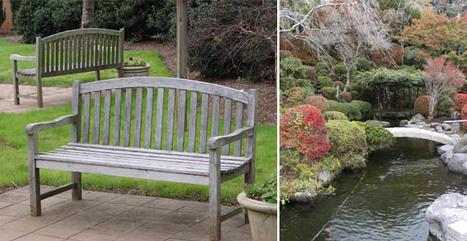 Giardini e orti a bassa manutenzione | About gardening | Scoop.it