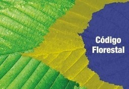 Código Florestal parece novela mal escrita | ~ alternativo, mas não bitolado ~ | Scoop.it