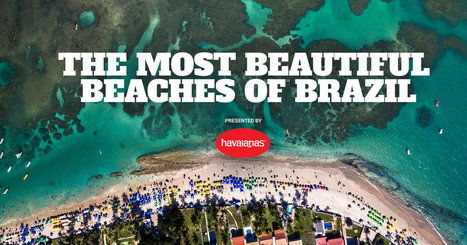 The Most Beautiful Beaches in Brazil | Travel - Places Around the World | Scoop.it