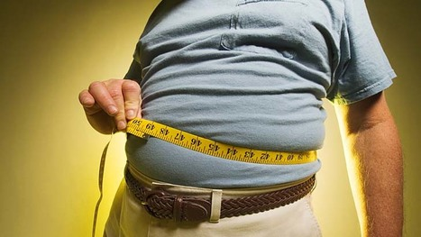 Fat Tax. Time to weigh in on a decision? | Freelance Photographer | Scoop.it