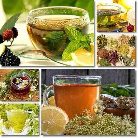 HealthFreedoms – 5 Wonderful Herbal Teas To Make Your Skin Glow | WHAT THINGS ARE GMO FOODS OR SUPPORTERS OF MONSANTO? Weather Disasters | Scoop.it