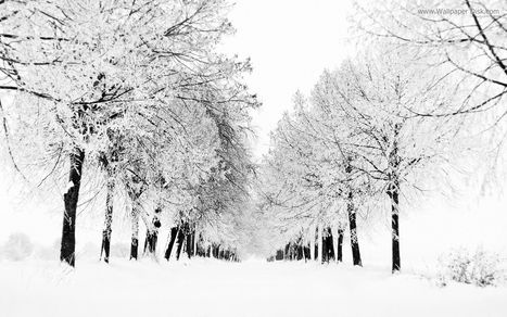 Snow, Ice & Cold Weather...will it ever end?? | Leadership | Scoop.it