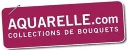 Le bad buzz du mois d'Août : Aquarelle.com | Guide Social Media | Bouche à Email | Scoop.it