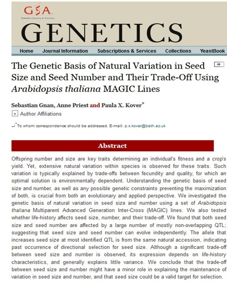 The Genetic Basis of Natural Variation in Seed Size and Seed Number and Their Trade-Off Using Arabidopsis thaliana MAGIC Lines | Plant multi-parent advanced generation intercross (MAGIC) populations | Scoop.it