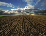 Les sols, une ressource au cœur d'enjeux antagonistes   ANR - Agence Nationale de la Recherche   EntomoScience   Scoop.it