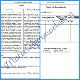 Lecturas con compresión lectora y rubrica para su evaluacion para todos los grados | EDUCACIÓN en Puerto TIC | Scoop.it